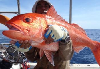 bali_fishing_ charters (5)